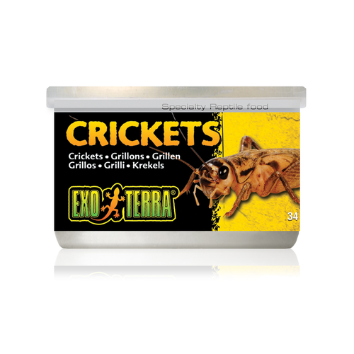 Exo Terra Canned Crickets 34g Reptile Lizard Food