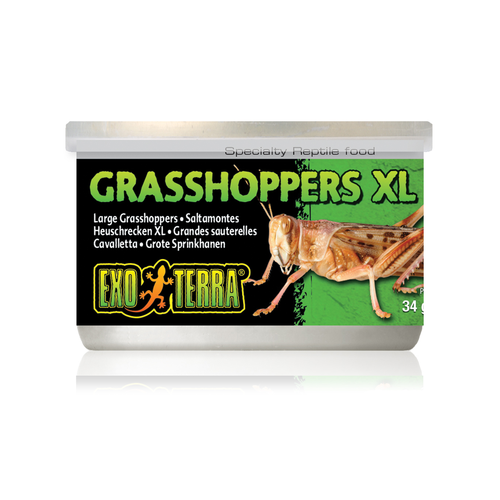 Exo Terra Canned Grasshoppers XL 34g Reptile Lizard Food