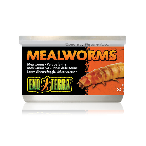 Exo Terra Canned Mealworms 34g Reptile Lizard Food