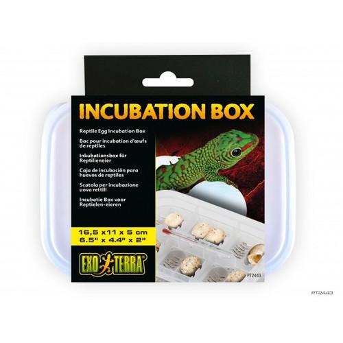 Exo Terra Reptile Incubation Tub