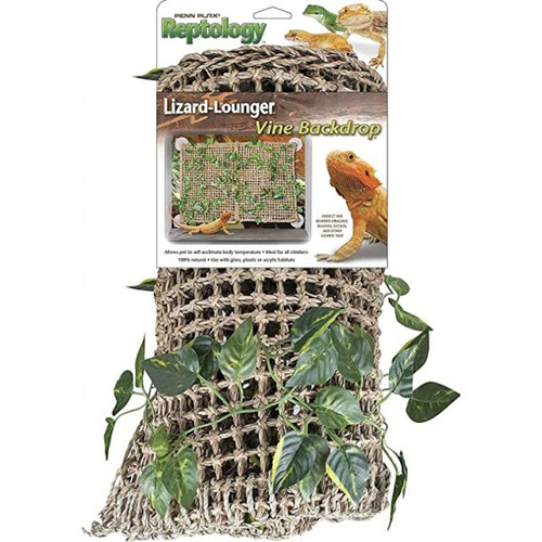 Lizard Loungers Hammock/Background with Vines
