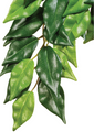 Exo Terra Forest Plant - Ficus - Small (PT3030)