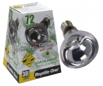 NEW - Halogen Heats Lamps