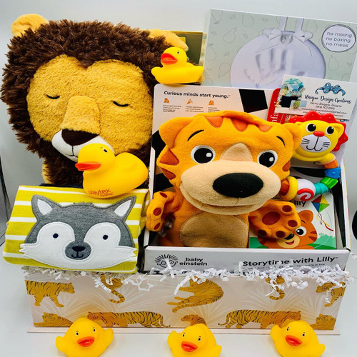 Customized Bundle of Joy Baby Gift