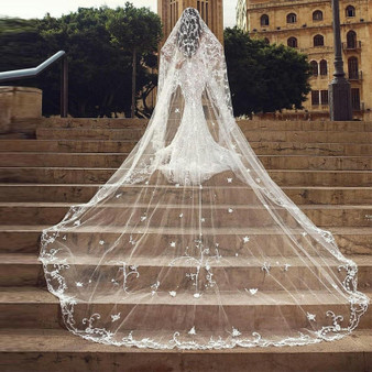 QueenLine Top Quality Lace Appliqued 3M Long Bridal Veil With Free Comb White Ivory Arabic Dubai Wedding Veil One Layered Tulle|Bridal Veils