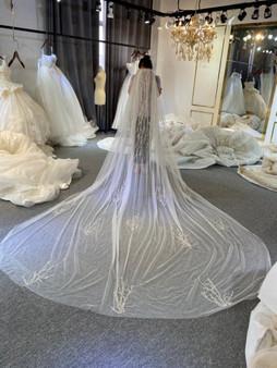 QueenLine Luxury Long Train Wedding Veil  Long Bridal Veil 2022|Bridal Veils|