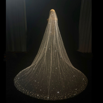 QueenLine Long 300cm shinny pearls wedding veil with glittler tulle with comb|Bridal Veils|