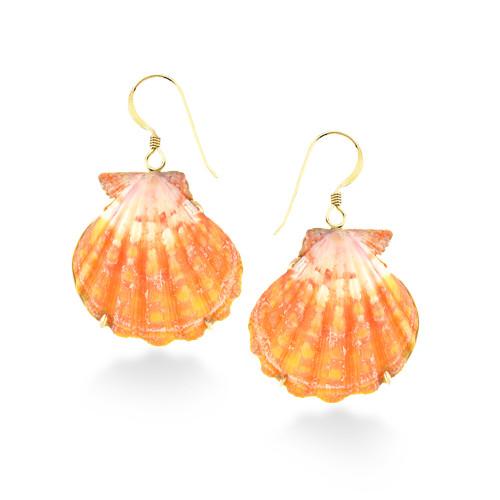 14K Sunrise Shell Earrings