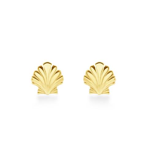 14K Seashell Earrings