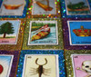 Loteria Mexican Wedding Matchbox Favors - Set of 25
