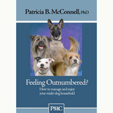 Feeling Outnumbered? How to Manage and Enjoy Your Multi-Dog Household (DVD)