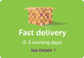 fast-delivery-2.png
