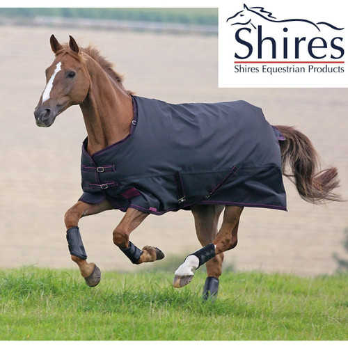 SHIRES TEMPEST PLUS 300G TURNOUT RUG 6'0''