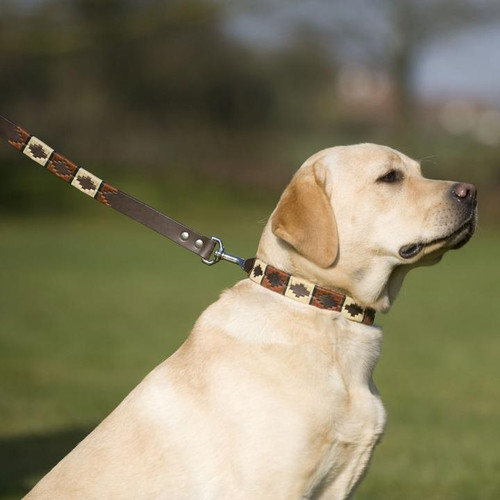 Copper/beige/green Dog collar