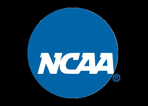 NCAA Collegiate Panoramic Fan Cave Decor