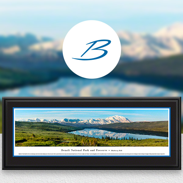 Denali National Park Scenic Landscape Panoramic Wall Art