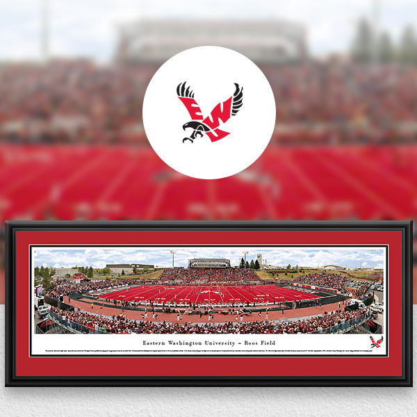 Eastern Washington Eagles Panoramic Posters and Fan Cave Decor