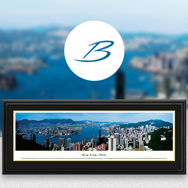 Hong Kong City Skyline Panoramic Wall Art