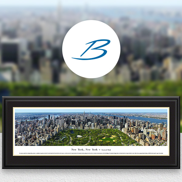 Central Park, New York City City Skyline Panoramic Wall Art