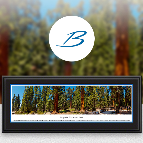 Sequoia National Park Scenic Landscape Panoramic Wall Art