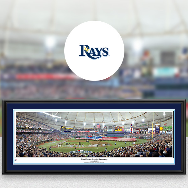 Tampa Bay Rays MLB Baseball Framed Panoramic Fan Cave Decor