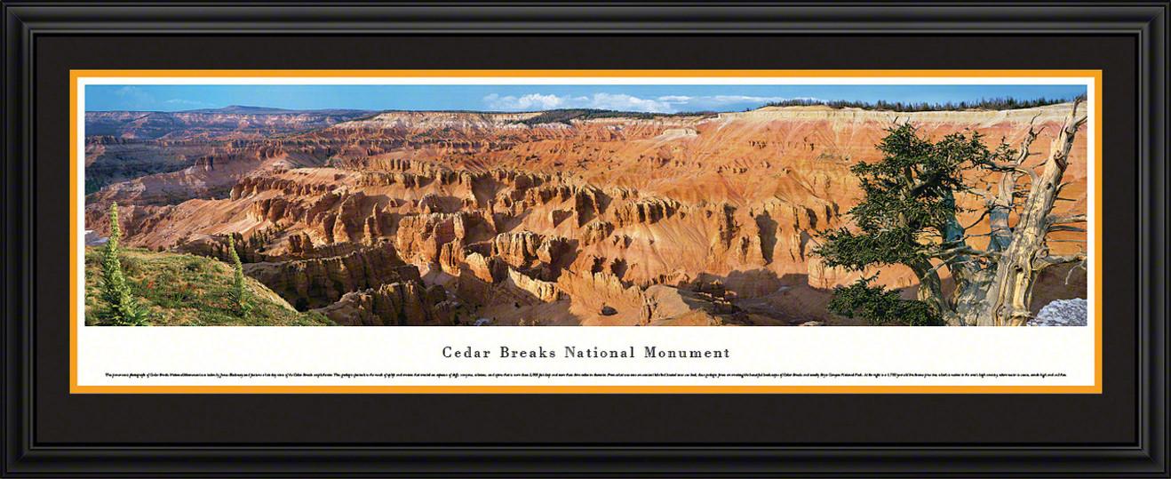 Cedar Breaks National Park Panoramic Picture