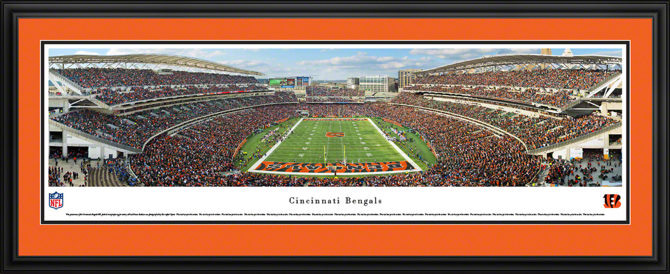 Cincinnati Bengals Panoramic - Paul Brown Stadium Picture - End Zone
