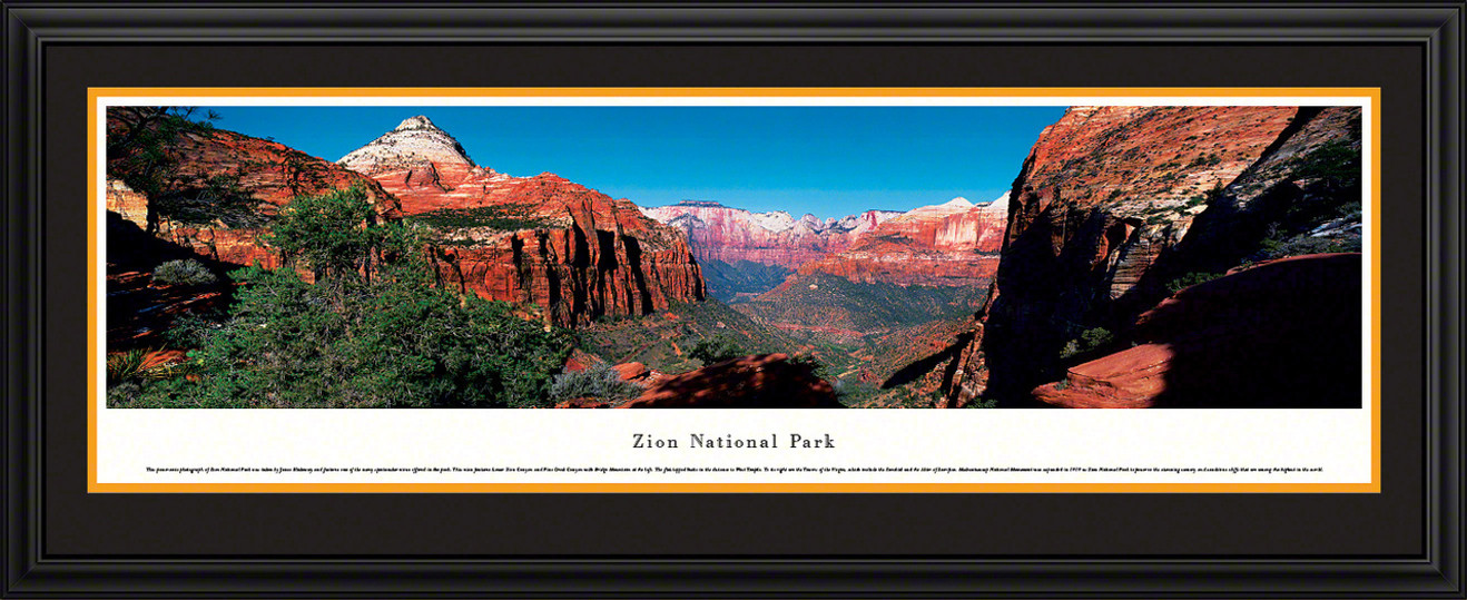 Zion National Park Panoramic Picture