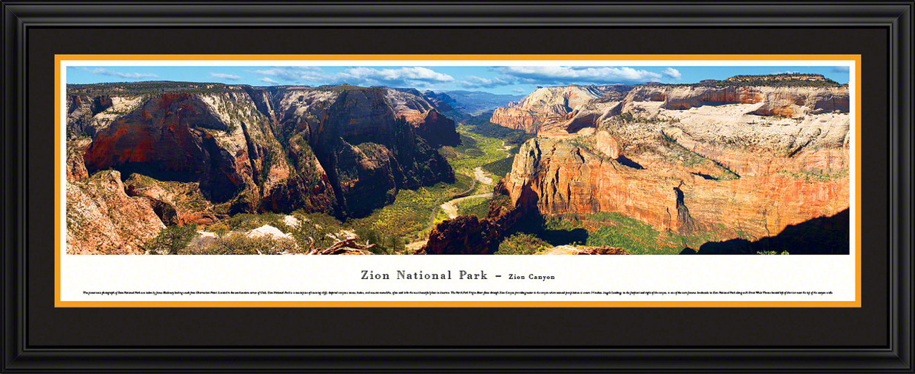 Zion National Park Panoramic Picture - Zion Canyon