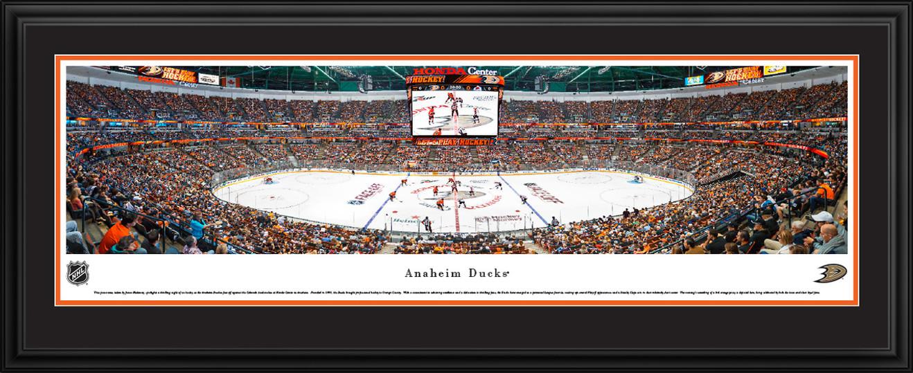 Anaheim Ducks Panoramic Picture - Honda Center Panorama
