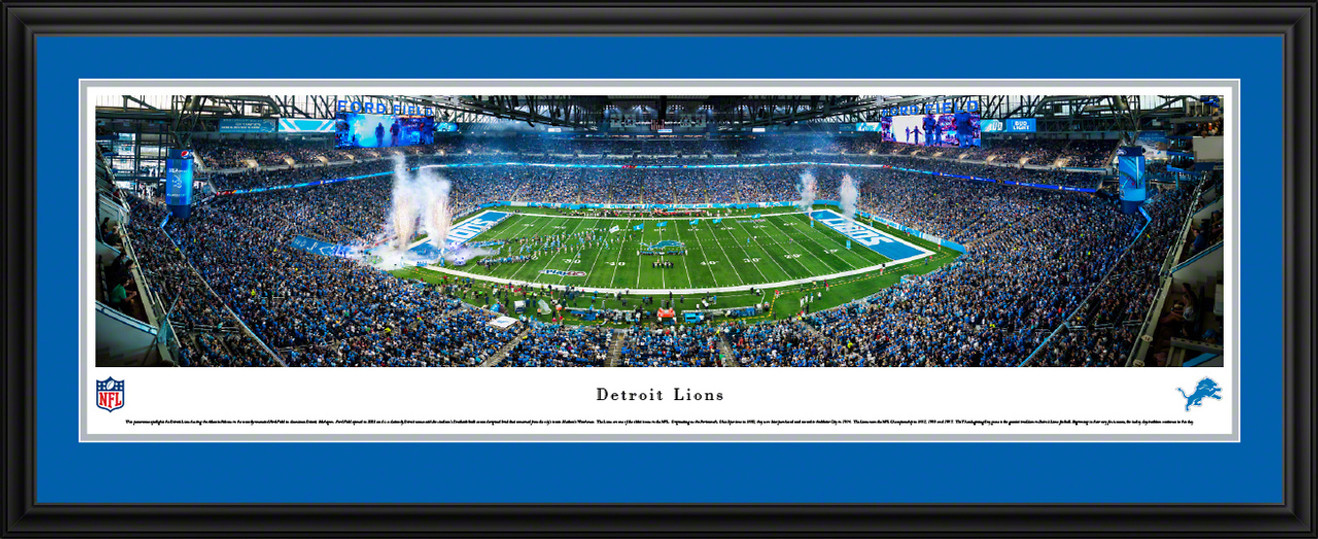 Detroit Lions Panoramic Picture - Ford Field