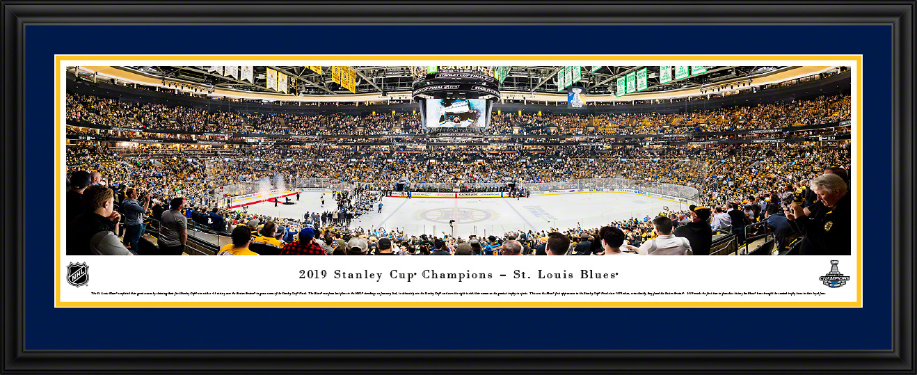 2019 NHL Stanley Cup Panoramic Picture - St. Louis Blues