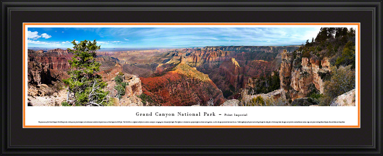 Grand Canyon National Park Panoramic Picture - Point Imperial