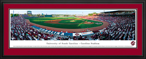 South Carolina Gamecocks Panoramic - Carolina Stadium Picture- Baseball