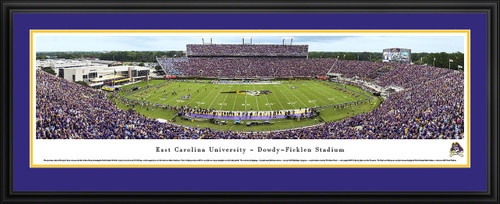East Carolina Pirates Panoramic Picture -  Dowdy Ficklen Stadium