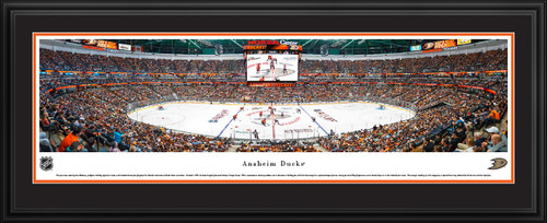 Anaheim Ducks Panoramic Picture - Honda Center Panorama