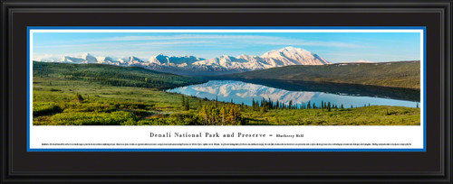 Denali National Park Scenic Panorama - Blueberry Hill