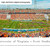 Virginia Cavaliers Football Panoramic - Scott Stadium Picture
