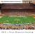 Texas Longhorns Football Panoramic Poster - Darrell K Royal Texas Memorial Stadium Picture