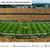 West Virginia Mountaineers Football Panoramic Fan Cave Decor - Mountaineer Field at Milan Puskar Stadium