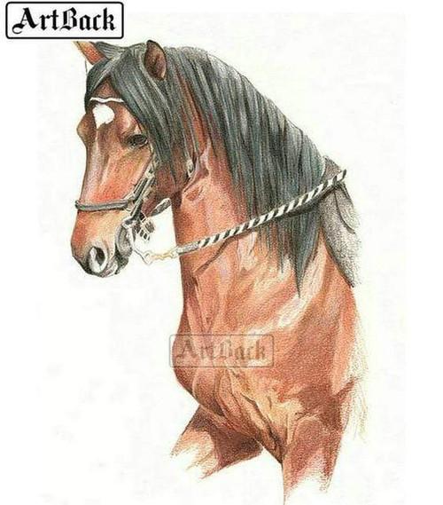 5D Diamond Painting White Star Chestnut Horse Kit