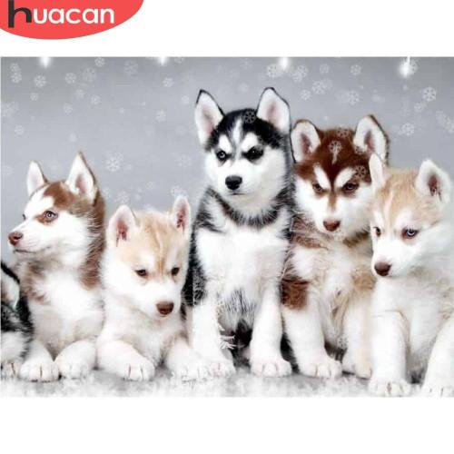 5D Diamond Painting Five Husky Puppies Kit