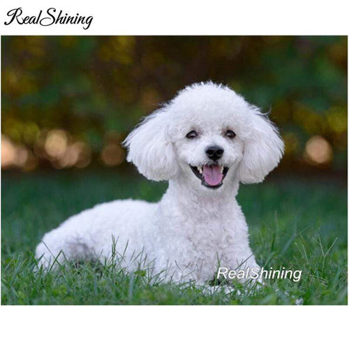 5D Diamond Painting White Poodle in the Grass Kit