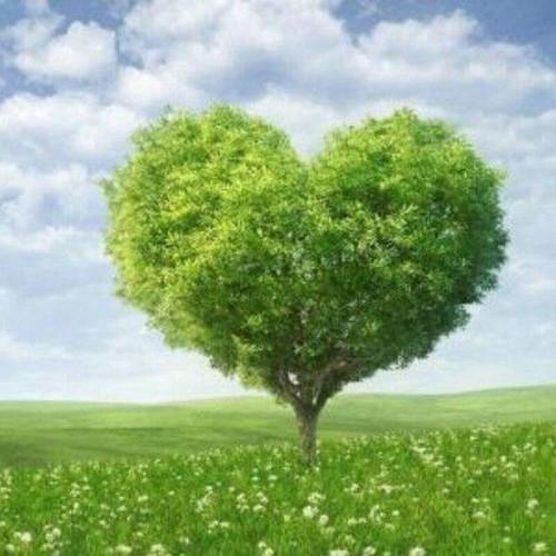 5D Diamond Painting Green Tree Heart Kit