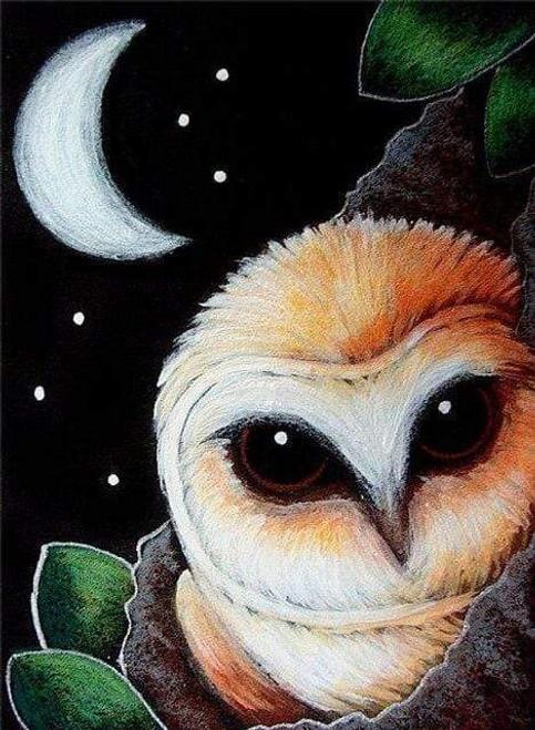 5D Diamond Painting Owl Crescent Moon Kit