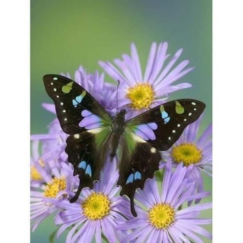 5D Diamond Painting Butterfly on Purple Daisies Kit