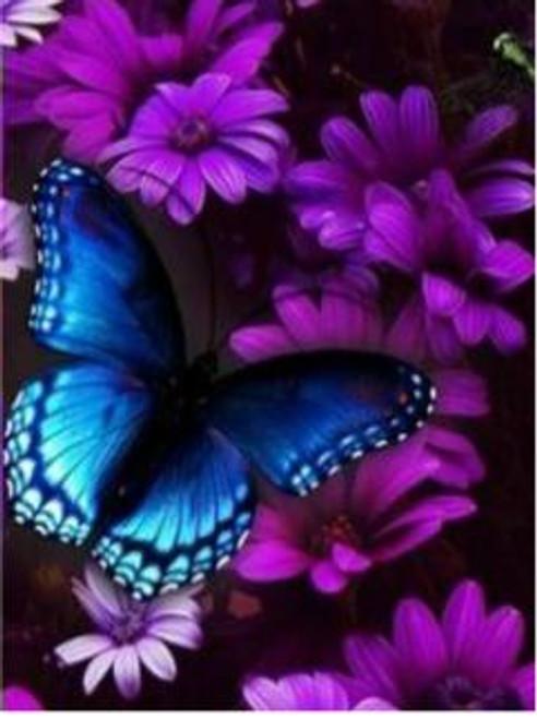 5D Diamond Painting Dark Blue Butterfly in the Purple Flowers Kit