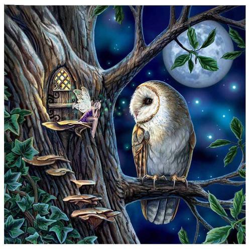 5D Diamond Painting Fairy Owl Moon Kit