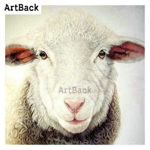 5D Diamond Painting Sheep Stare Kit