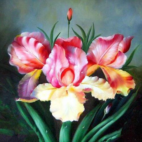 5D Diamond Painting Pink And Yellow Irises Kit